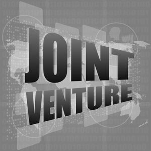 The Growth of Joint Ventures in Spain