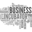 The Rise of Spanish Business Incubators