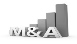 Spain's M&A activity soars in February